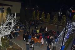 Gilau - Anul Centenar si Ziua Nationala a Romaniei - 2018 (16)
