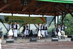 Festival-cugir (5)