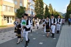 Festival-cugir (7)