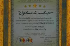 Diploma-de-excelenta---Primar-de-5-stele