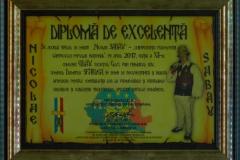 Diploma-de-excelenta---Titlu-de-merit---Nicolae-Sabau