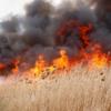 Măsuri de prevenire a incendiilor de vegetație